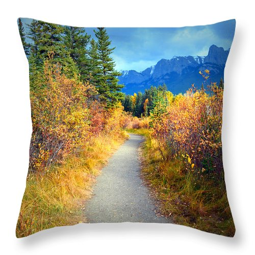 Autumn Throw Pillow featuring the photograph Autumn In Canada by Tara Turner