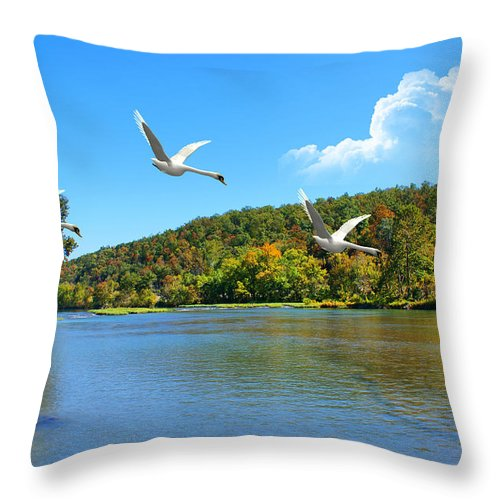 Landscape Throw Pillow featuring the photograph Autumn Landing by Rick Friedle
