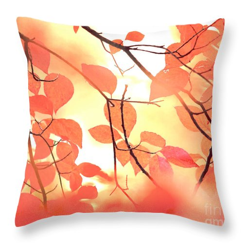 Autumn Throw Pillow featuring the photograph Autumn Leaves Ablaze With Color by Kim Fearheiley