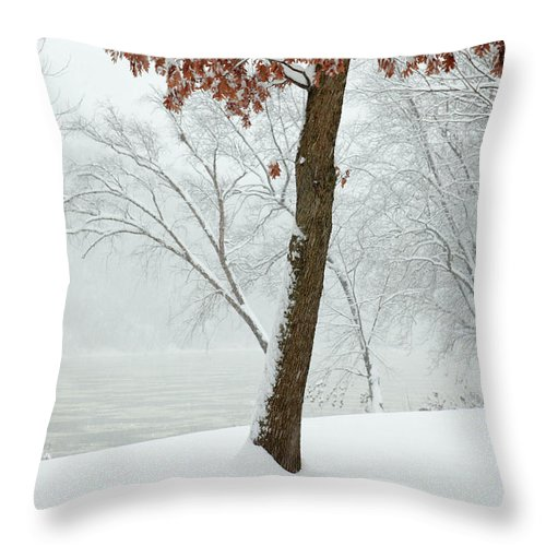 Winter Throw Pillow featuring the photograph Autumn Leaves In Winter Snow Storm by John Stephens