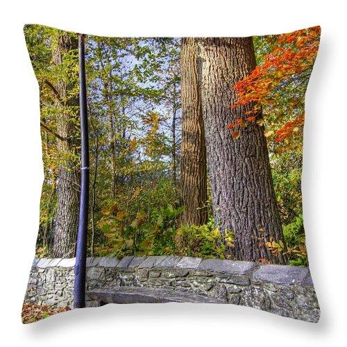 Autumn Landscape Throw Pillow featuring the photograph Autumn Light by Benanne Stiens