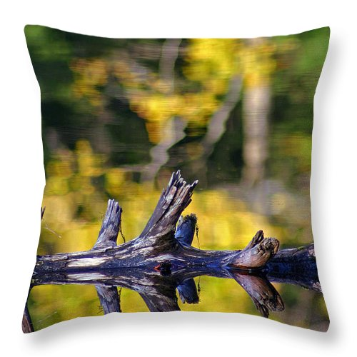 Autumn Throw Pillow featuring the photograph Autumn Mirrors by David Rucker