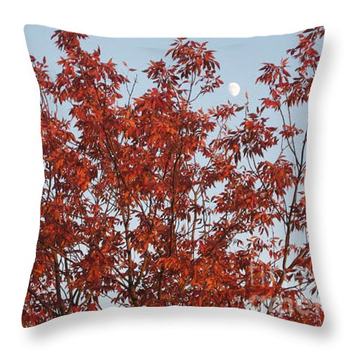 Red Brown Leaves Throw Pillow featuring the photograph Autumn Moon by Sonali Gangane