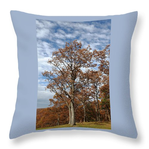 Rust Throw Pillow featuring the photograph Autumn Oaks White Clouds by John Stephens