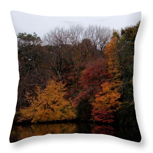 Autumn Throw Pillow featuring the photograph Autumn On The River by Barry Doherty