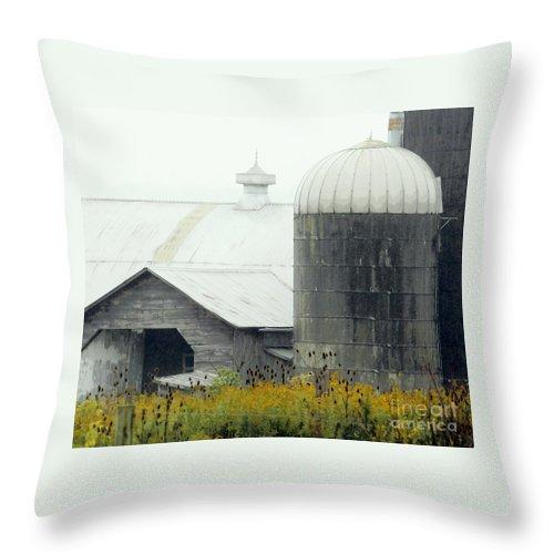 Barn Throw Pillow featuring the photograph Autumn Rain by Joe Jake Pratt