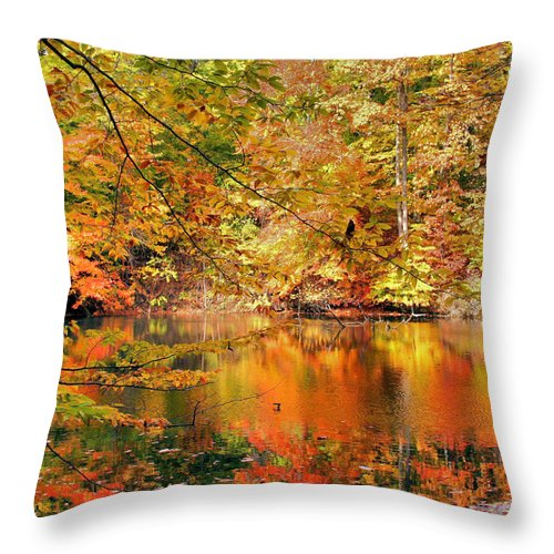 Autumn Throw Pillow featuring the photograph Autumn Reflections by Kristin Elmquist