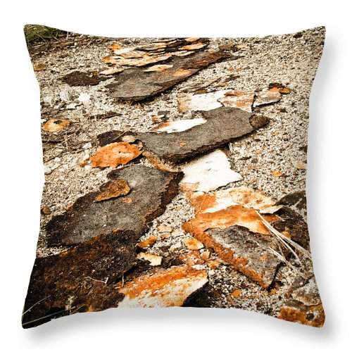 Autumn Throw Pillow featuring the photograph Autumn Rusted by Jessica Brawley
