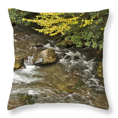 Autumn Throw Pillow featuring the photograph Autumn Stream 6149 by Michael Peychich