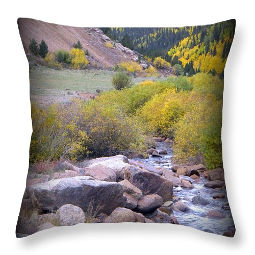 Landscapes Throw Pillow featuring the photograph Autumn Stream by Michelle Frizzell-Thompson