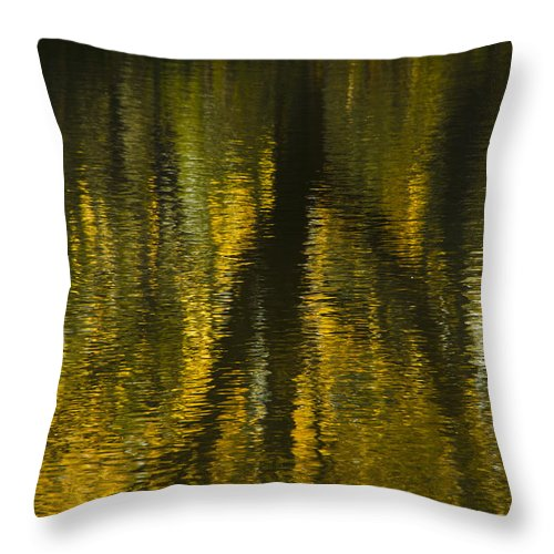 Montreal Throw Pillow featuring the photograph Autumn Water Reflection Abstract I by Valerie Rosen