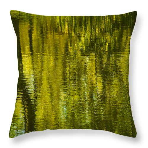 Montreal Throw Pillow featuring the photograph Autumn Water Reflection Abstract IIi by Valerie Rosen
