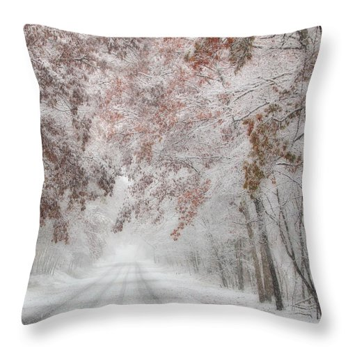 Winter Throw Pillow featuring the photograph Autumn Wonderland by Lori Deiter