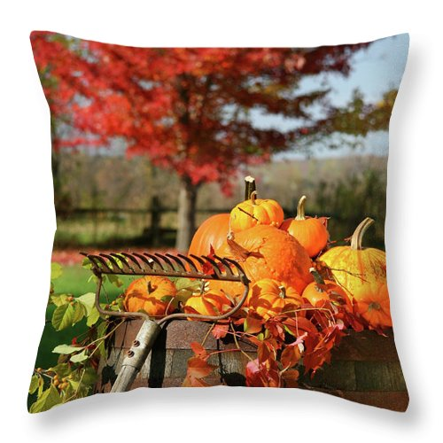 Agriculture Throw Pillow featuring the photograph Autumns Colorful Harvest by Sandra Cunningham