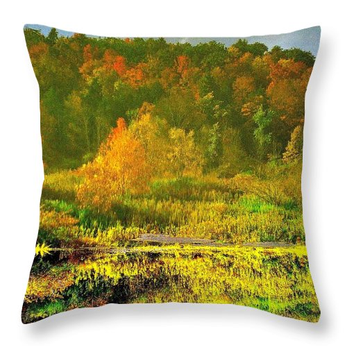 Landscape Throw Pillow featuring the photograph Autumn's Glory by Donald Black