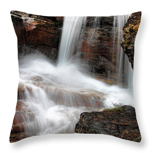Water Throw Pillow featuring the photograph Avalanche Creek - Glacier National Park by Shari Jardina