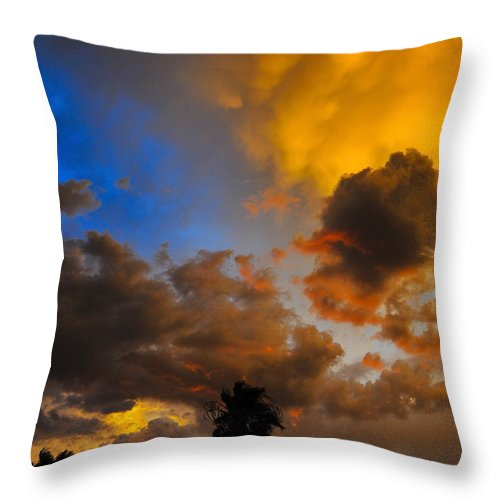 Aware Throw Pillow featuring the photograph Aware by Skip Hunt