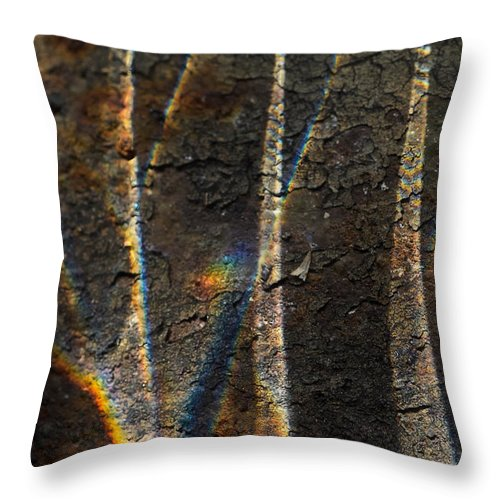 Abstract Throw Pillow featuring the photograph Aztec Sails by Susan Capuano