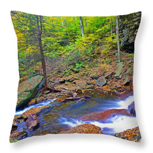 Pennsylvania Throw Pillow featuring the photograph B Reynolds Falls Panorama by Rich Walter