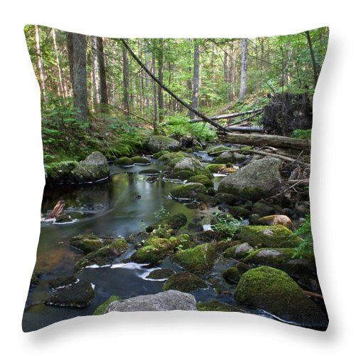 Water Throw Pillow featuring the photograph Babbling Brook by Greg DeBeck