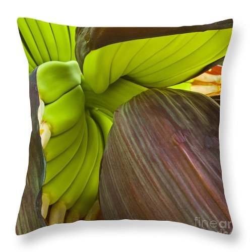 Banana Throw Pillow featuring the photograph Baby Bananas by Heiko Koehrer-Wagner
