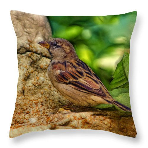 Bird Throw Pillow featuring the photograph Baby Birdie by Linda Tiepelman