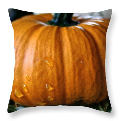 Outdoors Throw Pillow featuring the photograph Baby Pumpkin Tears by Susan Herber