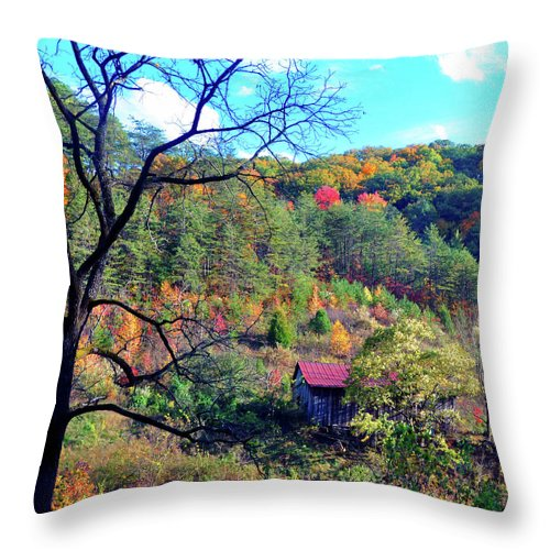 Gatlinburg Throw Pillow featuring the photograph Back Road Barn by Brittany Horton