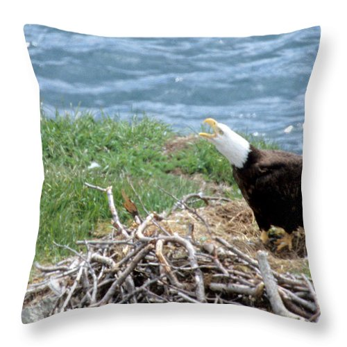 Bald Eagle Throw Pillow featuring the photograph Bald Eagle Calling by Larry Allan