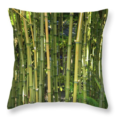 Bamboo Throw Pillow featuring the photograph Bamboo by Carol Groenen