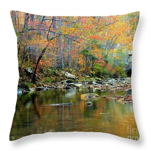 Creek Throw Pillow featuring the photograph Barkshed Creek Toned by Kevin Pugh