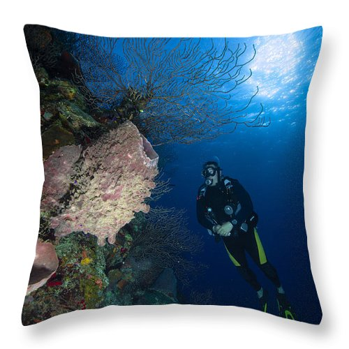 Diver Throw Pillow featuring the photograph Barrel Sponge And Diver, Belize by Todd Winner