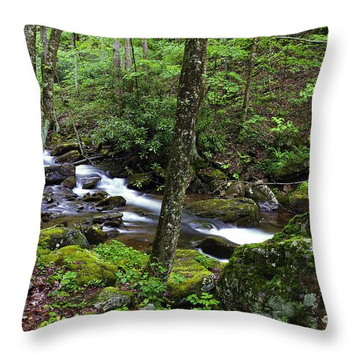 Stream Throw Pillow featuring the photograph Barrenshe Run by Thomas R Fletcher
