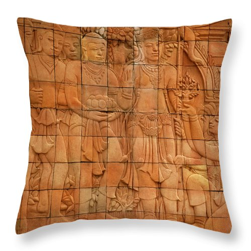 Asia Throw Pillow featuring the photograph Bas Relief by Shaun Higson