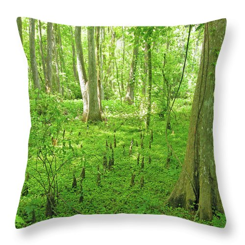 Swamp Throw Pillow featuring the digital art Baton Rouge Blueonnet Swamp La by Lizi Beard-Ward