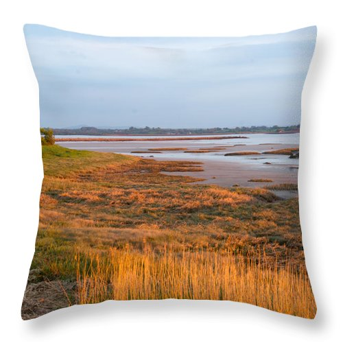 Bay Throw Pillow featuring the photograph Bay At Shannon Airport Ireland 2 by Douglas Barnett