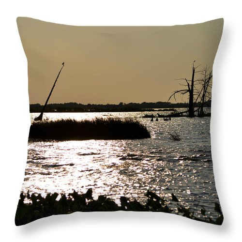 Bayou Throw Pillow featuring the photograph Bayou Sunset by Maggy Marsh