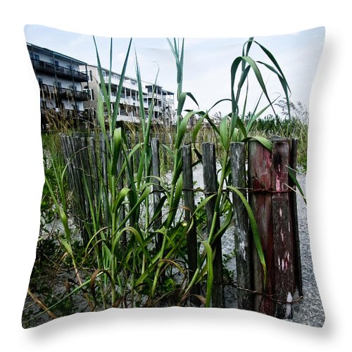 Beach Throw Pillow featuring the photograph Beachside Blues by Jessica Brawley