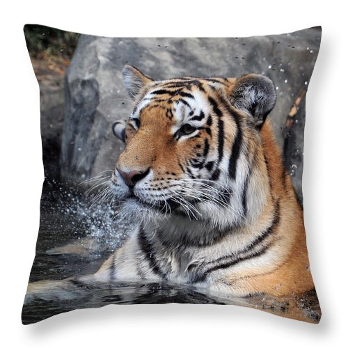 Animal Throw Pillow featuring the photograph Beating The Heat by Mike Martin
