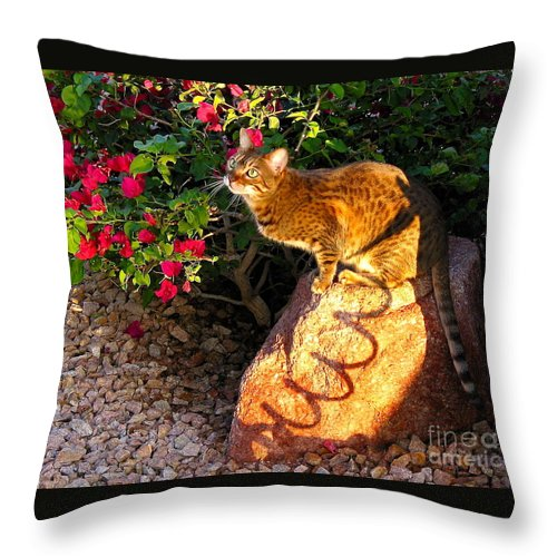 Bengal Cat Throw Pillow featuring the painting Beautiful Bengal Cat Ready To Spring by Phyllis Kaltenbach