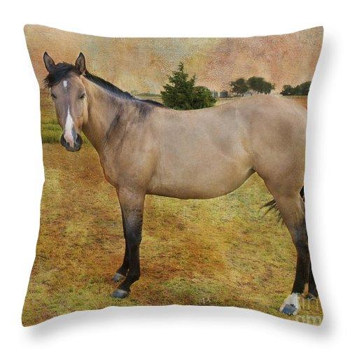 Horse Throw Pillow featuring the photograph Beautiful Buckskin by Betty LaRue