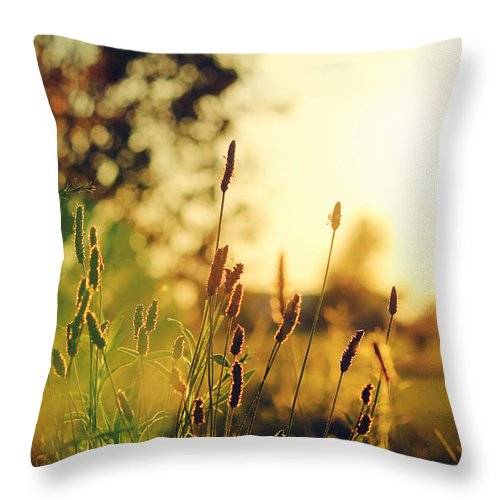 Weeds Throw Pillow featuring the photograph Beautiful Fuzzy Life by Lucy Bruce