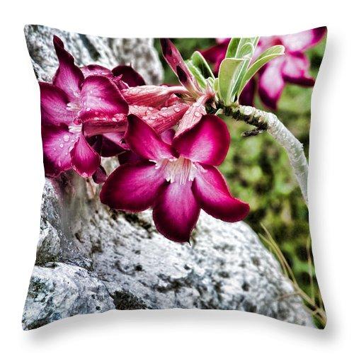 Jamaica Throw Pillow featuring the photograph Beautiful Rock by Sheri Bartoszek