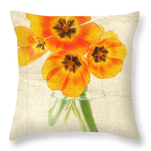 Agriculture Throw Pillow featuring the photograph Beautiful Tulips by Darren Fisher