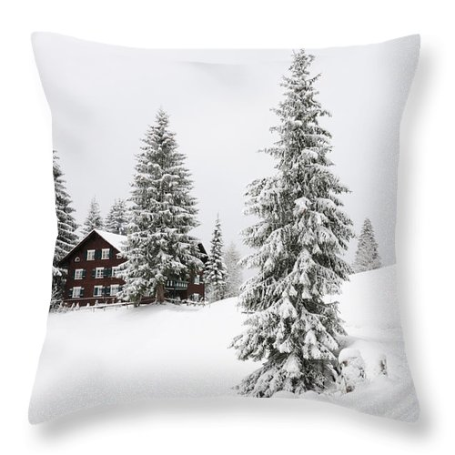 Winter Landscape Throw Pillow featuring the photograph Beautiful Winter Landscape With Trees And House by Matthias Hauser