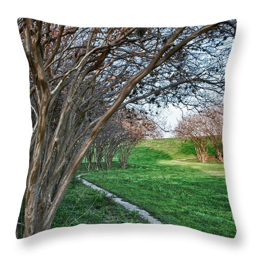 Crepe Myrtles Throw Pillow featuring the photograph Beauty Without Blossoms by James Woody