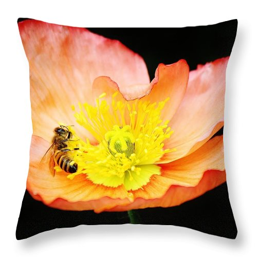 Bee Throw Pillow featuring the photograph Bee Asleep In A Flower by Paulette Thomas
