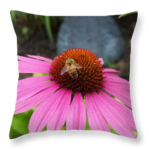 Nature Throw Pillow featuring the photograph Bee Gathering Pollen On Cone Flower by Corinne Elizabeth Cowherd