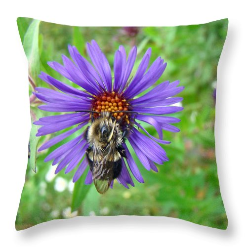 Bee Throw Pillow featuring the photograph Bee Hug by Mother Nature