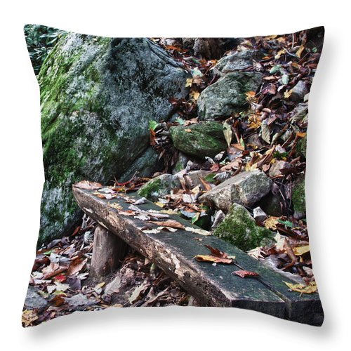 Virginia Throw Pillow featuring the photograph Bench Beside The Trail To Cascade Falls by James Woody